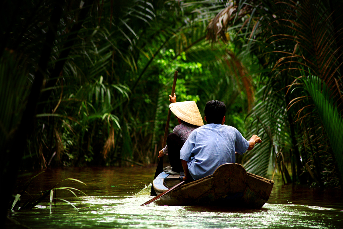 Woman paddling in the forest, Mekong Delta, Vietnam