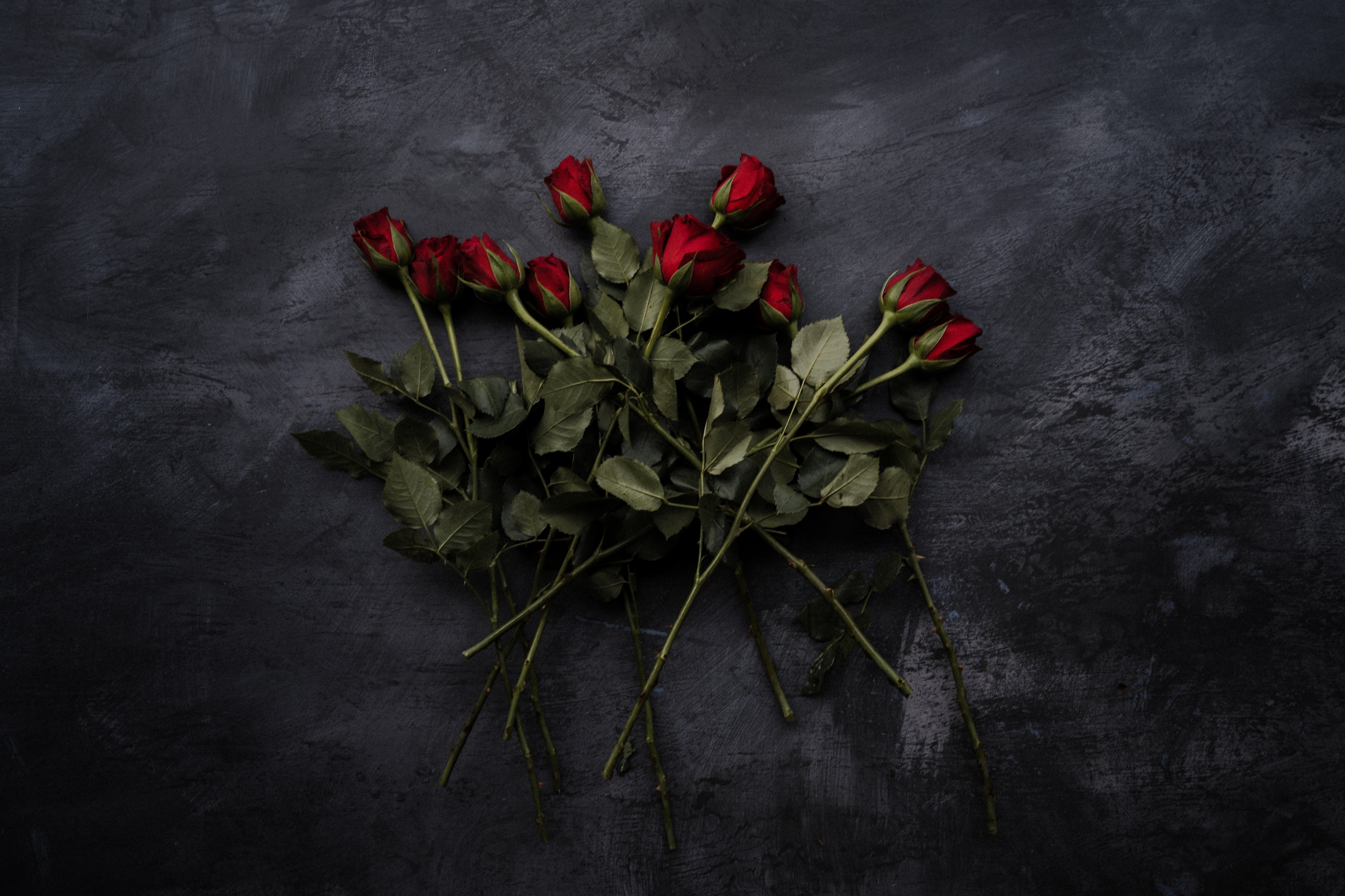 Why Valentine's Day roses may be hurting the planet